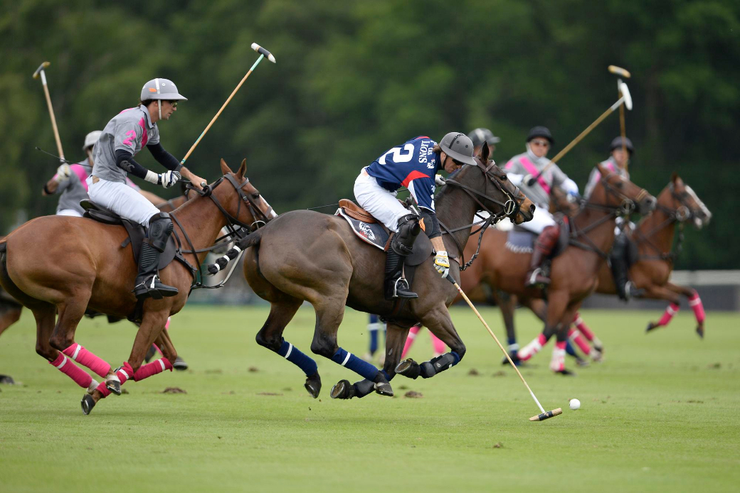 Queens polo cup tournament england 2013 polo magazine images of polo talandra les lions 5