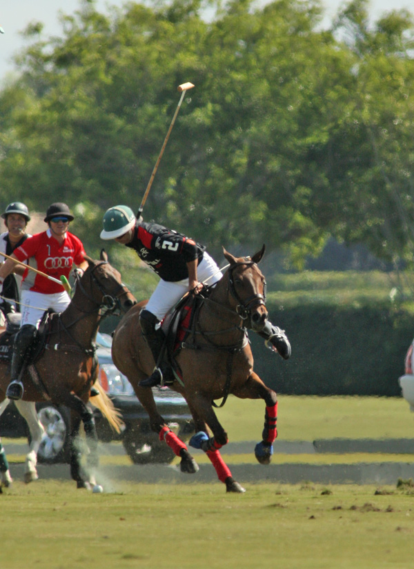 polomagazinepachecoPhotos-Bobby Barry Cup Orchard Hill Audipoloteam 2